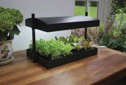 Indoor Herb Planters by Indoor Herb Garden System With Artificial Light
