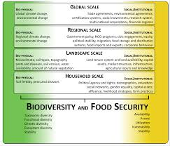 a social ecological perspective on food security and biodiversity