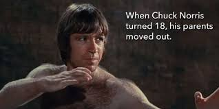 What The Meme - how chuck norris facts became the internet s first great meme