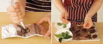 easy fall cake recipes how to make chocolate cake