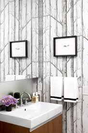 Contemporary Wallpaper For Bathrooms - best 25 birch tree wallpaper ideas on pinterest tree wallpaper