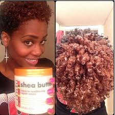 define coiffed hair photo 142 best natural hair images on pinterest african hairstyles