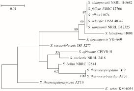 molecules free full text a novel insecticidal peptide slp1