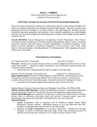 Professional Development Resume Nora Cammon Sales And New Business Development Resume