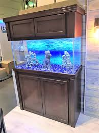 r j enterprises fusion 50 gallon aquarium tank and cabinet r j enterprises home facebook