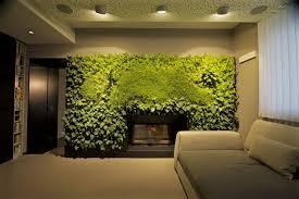 giardini interni casa arredare con le piante una parete verde in casa cose di casa