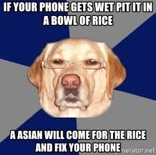 Phone Rice Meme - if your phone gets wet pit it in a bowl of rice a asian will come
