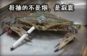 crabs smoking cigarettes know your meme
