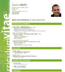layout cv a superb cv layout for your cv