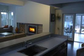 Contemporary Gas Fireplace Insert by Modern Wood Fireplace Inserts Cpmpublishingcom