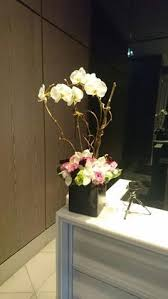 weekly flower delivery weekly flower arrangements with orchids in various sizes