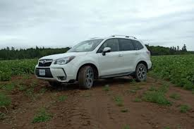green subaru forester 2016 review 2016 subaru forester for climbing mountains amid family
