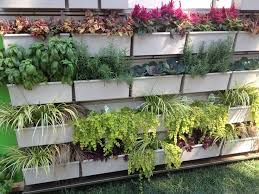 7 best vertical gardening ideas for the home images on pinterest