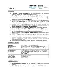 Best Resume Executive Summary by Sql Server Resume Resume For Your Job Application