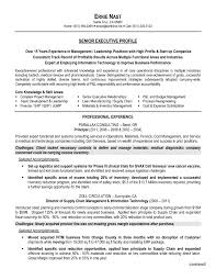 Executive Level Resume Samples by Resume For Supply Chain Executive Resume For Your Job Application