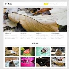 free html5 u0026 css3 wordpress themes