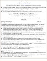 exles of business resumes amazing resume rewrite contemporary exle resume ideas
