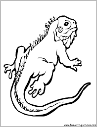 gecko coloring pages coloring pages online