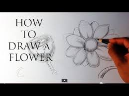 how to draw a flower easy drawings youtube
