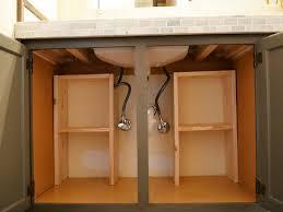 Under Bathroom Sink Storage by Under Bathroom Sink Organizer Home Design Ideas