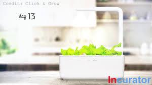 indoor smart fresh herb garden kit incurator com youtube