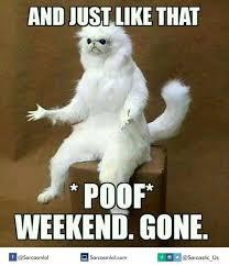 Funny Monday Meme - monday memes home facebook