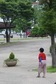 new life korea lantinga family hwanho park zoo gym playground