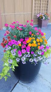 Landscape Flower Garden by Flower Garden Design U0026 Installation Seasonal Color Maintenance
