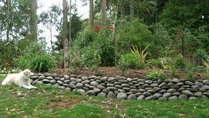 rock wall garden designs there are more stone wall dog2