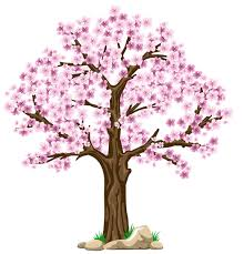 transparent pink tree png clipart picture planner happiness