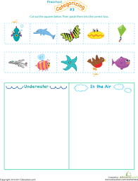 cut and categorize 3 worksheets the sky and sky