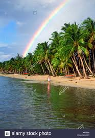 polynesian woman walking under rainbow and palm trees on aitutaki