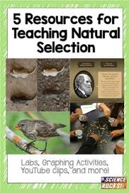 charles darwin and evolution detailed lesson plans and image