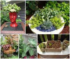 Container Garden Ideas Full Sun Garden Container Garden Inspirational Growing Hydrangeas In Pots