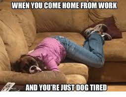Tired At Work Meme - when you come home from work and you re just dog tired meme on me me