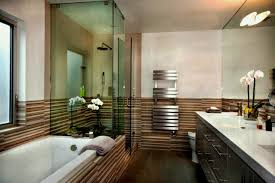 design on a dime bathroom astonishing bathroom small ideas with corner shower only picture