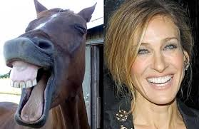 Sarah Jessica Parker Horse Meme - 40 celebrities who look like animals the twist gossip