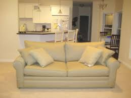 ordinary colored couch gardenweb forums home design inspiraion ideas