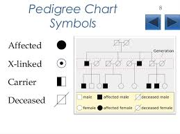 pedigrees lecture