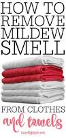 the 25 best clean mildew towels ideas on pinterest cleaning