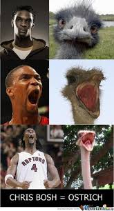 Chris Bosh Memes - chris bosh ostrich by serkan meme center