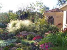 drought tolerant landscaping drought turf mobile homes