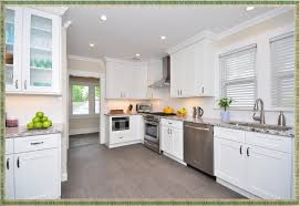 Kinds Of Kitchen Cabinets Kitchen Contemporary White Shaker Base Cabinets Types Of Kitchen