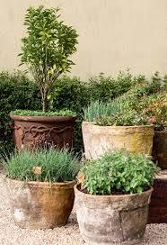 planters amusing large terracotta pots terra cotta pots home