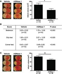 extracellular chromatin is an important mediator of ischemic