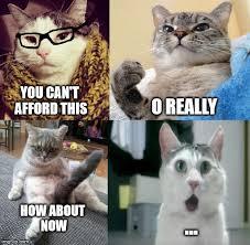 O Really Meme - how she be imgflip