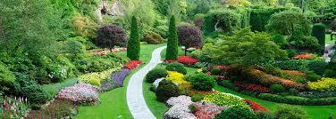 garden design garden design with garden design on pinterest green