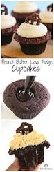 peanut butter lava fudge cupcakes cleobuttera