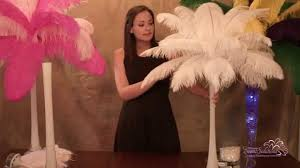 ostrich feather centerpieces ostrich feather centerpieces how to make