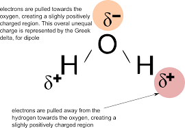 learn biochemistry the chemistry of life